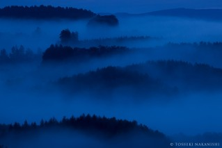 夜明け前の青の世界を描く